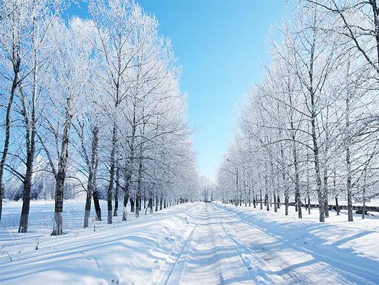 inverno_g_opt