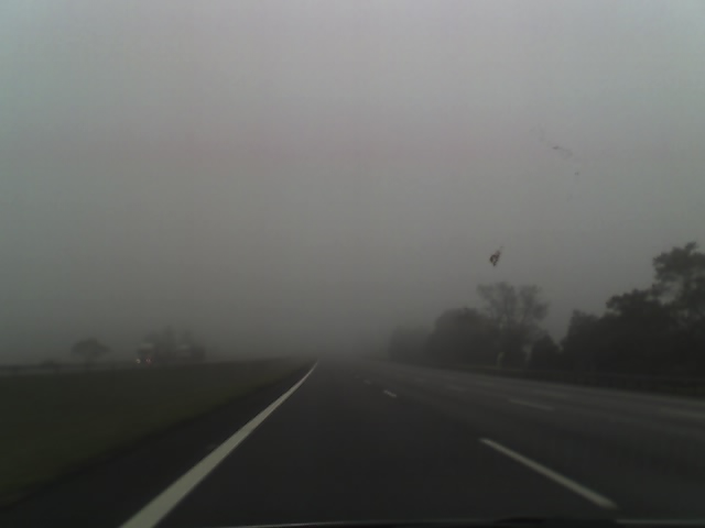 neblina (1)